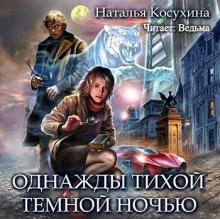 Однажды тихой темной ночью Наталья Косухина скачать аудиокнигу бесплатно